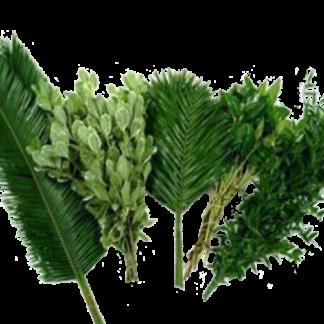 Cutgreens